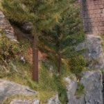 Wald - Fichtenbau im Modell